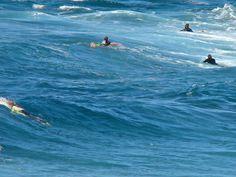 Panoramio - Photo of #Surfen in Playa El #Socorro im Norden von #Tenerife
