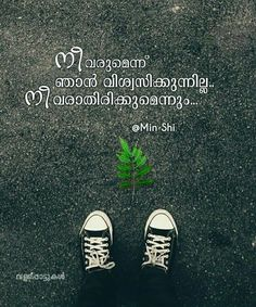 375 Best Soul Images In 2019 Malayalam Quotes Ducks Well Said Quotes