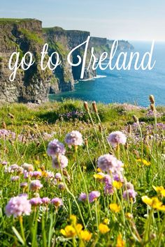 go to Ireland!