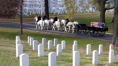 Arlington National Cemetery | Simply Marvelous Horse World