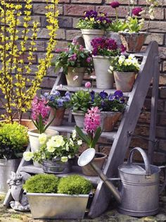 Flower stairs with spring flowers-Blumentreppe mit Frühlingsblumen A blooming staircase with spring flowers is a very special eye-catcher. Rustic Garden Decor, Vintage Garden Decor, Rustic Gardens, Outdoor Gardens, Rustic Patio, Outdoor Pots, Garden Planters, Garden Art, Gravel Garden