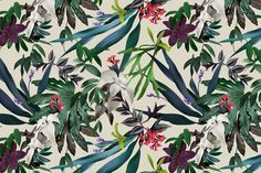 illustration plants pattern ink - Google Search