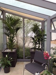Inside the new Horizon Greenhouse at RHS Chelsea Flower Show 2012