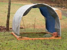 Portable shelter for the sheep.  It can be pulled around the yard and enclosed with a portable fence.