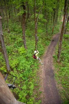 Zip Lining! Eco Adventure Tour at Scenic Caves Collingwood