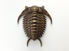 Trilobite in Polished Bronze Steel