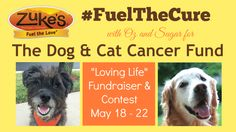 Join Oz and Sugar to Fuel The Cure for The Dog & Cat Cancer Fund with Zuke's