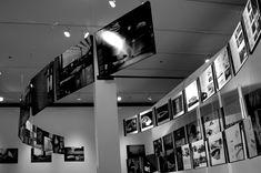 "Allestimento ""Portugal Now"" John Hartell Gallery di New York"