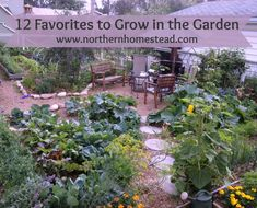 Here are 12 of our favorites to grow in the garden. The list is not exhausted…