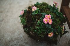 Spring moss and wildflower aisle decorations // Rainy romantic wedding shoot // Box and Cox Vintage Hire // The Natural Wedding Company Cornish Wedding, Aisle Decorations, Spring Wedding Inspiration, Wedding Company, Ceremony Arch, Real Couples, Wedding Shoot, Wild Flowers, Vintage Fashion