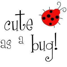 Ladybug Lady Bug Wall Decal - Cute As A Bug - Children Nursery Vinyl Wall Decal Sticker. $20.00, via Etsy.