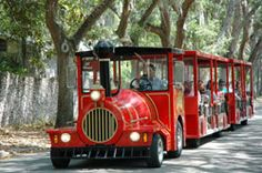 Red Train City Tours - 3 day hop-on/hop-off