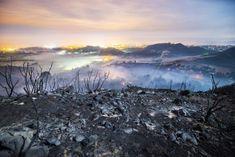 La Tierra, cambios profundos en 2050 / Alicia Rivera + @elpais_sociedad | #readyforclimatechange