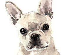 French Bulldog Puppy Cute & Innocent - ORIGINAL Watercolor 5 x 7 - Light Fawn Cutie Dog Lover Puppy Pal