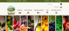 #Likyaçiftliği #online satışlarını Ticimax altyapısıyla yapıyor.  #eticaret #sanalmağaza #eticaretsitesi #onlinesatış #ecommerce #mobilticaret #satışsitesi #ticimax  https://www.ticimax.com/e-ticaret-siteleri/