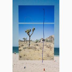 ALICE QUARESMA, Mental Object 4 - 40 x 27 inches | acrylic paint over photographic print | 2017