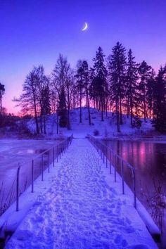 A well worn Winter's Path