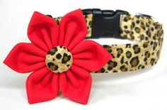 Dog Collar Flower Set: Cheetah Animal Print Dog Collar with Red, Turquoise, or Pink Flower Diy Dog Collar, Dog Collars, Cheetah Animal, Cheetah Print, Diy Gifts For Dad, Baby Puppies, Baby Dogs, Thing 1, Girl And Dog