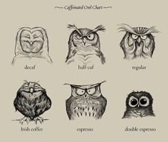 Funny pictures about Owl Chart. Oh, and cool pics about Owl Chart. Also, Owl Chart photos. Coffee Chart, Illustrator, Owl Coffee, Decaf Coffee, Espresso Coffee, Starbucks Coffee, Black Coffee, Hr Giger, Drawing Eyes