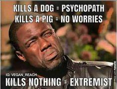carnist hypocrisy