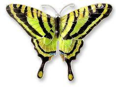 Yellow Tiger Swallowtail Butterfly Sterling Silver and Enamel Pin Zarah. $38.99
