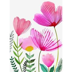 Margaret Berg Art : Illustration : florals / spring ❤ liked on Polyvore featuring home, home decor and wall art