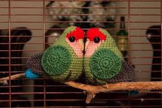 This pattern will allow you to make a cute little Peach Faced Love Bird!