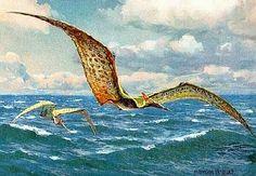 »»» Der Pterosaurier, auch Flugsaurier genannt, wird den Reptilien und Wirbeltieren zugeordnet...    #wissen #dino