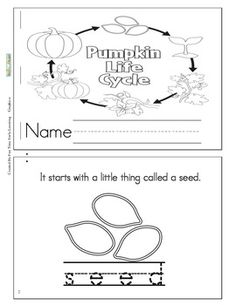 This is a cute coloring and story book about the life cycle of a pumpkin.It also has tracing skills. 1st Grade Science, Kindergarten Science, Kindergarten Reading, Teaching Science, Kindergarten Classroom, Science Activities, Fall Preschool, Sequencing Activities, Teaching Ideas