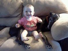 Babies and greyhounds