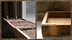 The Occasional Gardener: Wooden Seed Trays