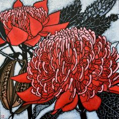 Julie Hickson: Pod and Pod red waratah Australian Wildflowers, Australian Native Flowers, Australian Plants, Australian Artists, Botanical Illustration, Botanical Prints, Illustration Art, Art Floral, Aboriginal Art