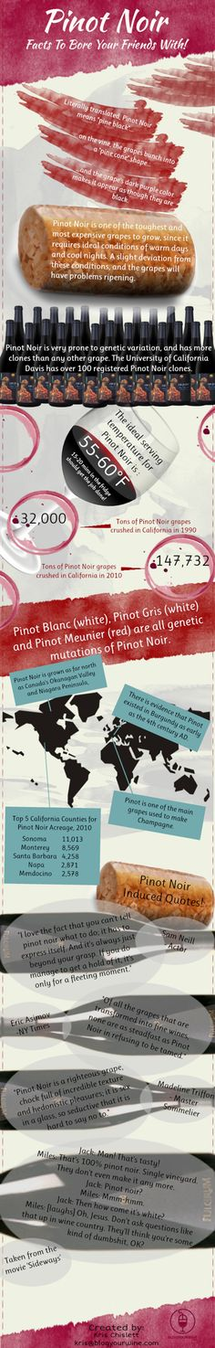 Pinot Noir wine infographic - all the wine facts for dinner