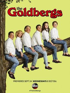 THE GOLDBERGS Season 2 Poster
