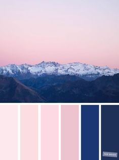 Blush and navy blue ,Blush tones : Pretty blush color scheme ,blush color combinations #blush #color #colorpalette