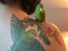 115 Best State Tattoo Images Maryland Tattoo Chesapeake Bay