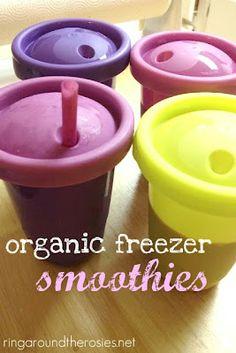 Organic Smoothies - Freezer Meal