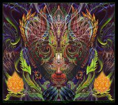 Full Frontal Fractal Feline (Luke Brown - SpectralEyes)