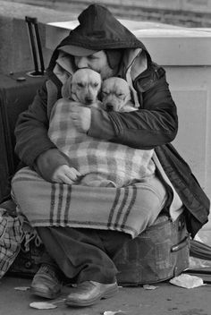 This picture express about that man is protects dogs from something . Or maybe the man is warm his dogs from the cold weather . It's beautiful picture .