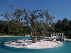 Cool Swimming Pool in Puglia Italy