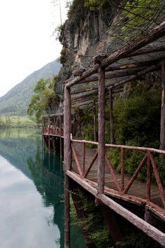 Panda Lake / Sichuan, China