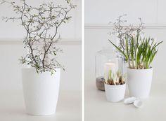 Flower Trends 2015 / Photo: Mestergronn.no