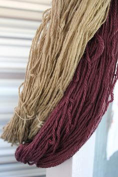 Yarns dyed with preparation of Xanthoria parietina lichen and elderberry, natural dyes, rhubarb leaf mordant