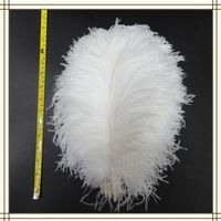"wholesale 100pcs/lot 12-14"" White fluffy Ostrich Feather Plume wedding decoration"