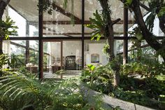 NITAPROW ARCHITECTS - PATOM ORGANIC LIVING  groen planten serre woning tuin doorzon binnen buiten