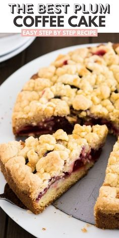 Plum Cake is a delicious coffee cake made with a simple batter, fresh plums, and a cookie-like nut-free streusel topping! This traditional German plum crumb cake is so easy to make from scratch and can also be baked on a sheet if you need to feed a crowd. Plum Recipes, Fruit Recipes, Sweet Recipes, Baking Recipes, Cake Recipes, Dessert Recipes, German Cakes Recipes, German Desserts, Chicken Recipes