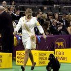 Savannah Livingston went through a whirlwind of emotions Tuesday night after learning she'd bested 97 other competitors to win the junior showmanship category during the 137th Westminster Kennel Club Dog Show at Madison Square Garden in New York City.