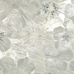 Limestone Tile Coral Stone Collection Coral Stone 18