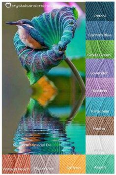 Kingfisher in flower. Yarn Color Combinations, Color Schemes Colour Palettes, Colour Pallette, Beautiful Color Combinations, Color Shades, Color Pop, Colours That Go Together, Inspiration Art, Pantone