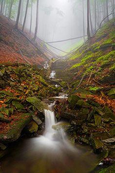 Czech Republic, Beskydy Mountains Photos Milan Sofer . Suchý potok Mountain Photos, Dry Creek, Heavens, Nature Photos, Czech Republic, Rivers, Positive Vibes, Serenity, Paths